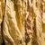 aszalt · dohány · levelek · fehér · izolált · kubai - stock fotó © deyangeorgiev