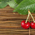 brilhante · suculento · fresco · ramo · vermelho · groselha - foto stock © deyangeorgiev