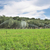 moderne · irrigatie · boerderij · veld · hemel - stockfoto © deyangeorgiev