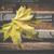 padló · csempék · kép - stock fotó © deyangeorgiev