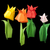 tulips isolated on black background stock photo © deyangeorgiev
