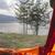kilátás · bent · sátor · ki · erdő · tavasz - stock fotó © deyangeorgiev