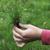 gazon · herbe · terre · main · texture - photo stock © deyangeorgiev