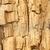 verweerde · gebarsten · hout · oppervlak · textuur · boom - stockfoto © dezign56