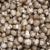 produzir · orgânico · cogumelos · exibir · agricultores · mercado - foto stock © dgilder
