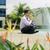 üzletember · meditál · jóga · kívül · irodaház · ázsiai - stock fotó © diego_cervo
