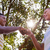 meninos · aperto · de · mãos · dois · jovem · raso · mãos - foto stock © diego_cervo
