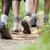 cipők · emberek · trekking · fa · sétál · csetepaté - stock fotó © diego_cervo
