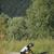 női · motoros · javít · hegyi · kerékpár · vidék · nő - stock fotó © diego_cervo