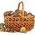 cesta · boletos · outono · floresta · natureza · verde - foto stock © digitalr