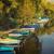 paisagem · lago · Balaton · casa · árvore · luz - foto stock © digoarpi