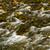 river stock photo © digoarpi