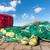 kırmızı · balık · tutma · arka · plan · ağ · tekne · sanayi - stok fotoğraf © digoarpi