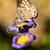 azul · borboleta · pequeno · família · flor · beleza - foto stock © digoarpi