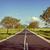 rechtdoor · asfalt · weg · leidend · afstand · bos - stockfoto © digoarpi