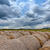 straw bales in raw strong clouds stock photo © digoarpi