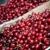 сочный · рубин · красный · вишни · весны · саду - Сток-фото © dinga