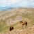 paisagem · montanhas · belo · céu · nuvens · natureza - foto stock © dinozzaver