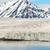 glaciar · mar · montanas · detrás - foto stock © dinozzaver