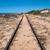 steel railroad tracks on sand beach stock photo © discovod