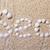 título · mar · conchas · coral · areia · praia - foto stock © Discovod