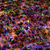 abstract · regenboog · rook · geïsoleerd · witte · water - stockfoto © discovod