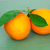 twee · geheel · rijp · sinaasappelen · geïsoleerd · witte - stockfoto © discovod