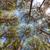 nagy · díszkivilágítás · áll · kék · ég · égbolt - stock fotó © discovod