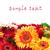美しい · デイジーチェーン · 花 · 孤立した · 白 · 花 - ストックフォト © discovod