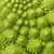 Textured Green Fresh Romanesque Cauliflower stock photo © Discovod
