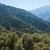 sequoila · park · drie · rivieren · Californië - stockfoto © disorderly