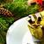 gezellig · geschenk · houten · oppervlak · mooie · papier - stockfoto © dla4