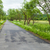 Country road with trees and fence stock photo © dmitroza