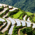 Vietnam · kat · dorp · landschap · december - stockfoto © dmitry_rukhlenko