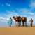 two cameleers camel drivers with camels in dunes of thar deser stock photo © dmitry_rukhlenko