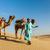 teve · sivatag · homok · piramisok · égbolt · nap - stock fotó © dmitry_rukhlenko