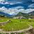 arrozal · Vietnã · árvore · grama · montanha · campo - foto stock © dmitry_rukhlenko