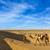 cameleer camel driver with camels in dunes of thar desert raj stock photo © dmitry_rukhlenko