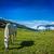 horse grazing in himalayas stock photo © dmitry_rukhlenko