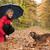 pioggia · ombrello · cane · inverno · baby · divertente - foto d'archivio © dnf-style