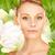 güzel · bir · kadın · zambak · resim · çiçek · kadın · yeşil - stok fotoğraf © dolgachov