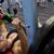 fiatalember · sajtó · tornaterem · fiatal · atléta · fekvőtámasz - stock fotó © dolgachov
