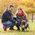 frans · bulldog · park · puppy · mannelijke · permanente - stockfoto © dolgachov