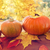close up of pumpkins on wooden table outdoors stock photo © dolgachov