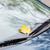 автомобилей · Motor · изолированный · белый · электроэнергии · чистой - Сток-фото © dolgachov