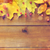 frame · vruchten · bessen · hout · natuur - stockfoto © dolgachov