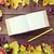 livro · groselha · framboesas · comida - foto stock © dolgachov
