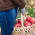 close up of woman with apples in basket at autumn stock photo © dolgachov