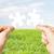 deux · mains · autre · écologie · vert · main - photo stock © dolgachov