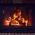 közelkép · tűzifa · égő · tűz · közelkép · fotó - stock fotó © dolgachov